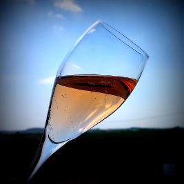 Pink champagne - rosé cava