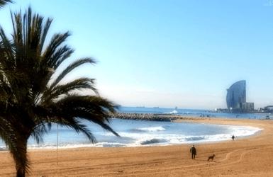 Barcelona Beach Hotels: Hotel W