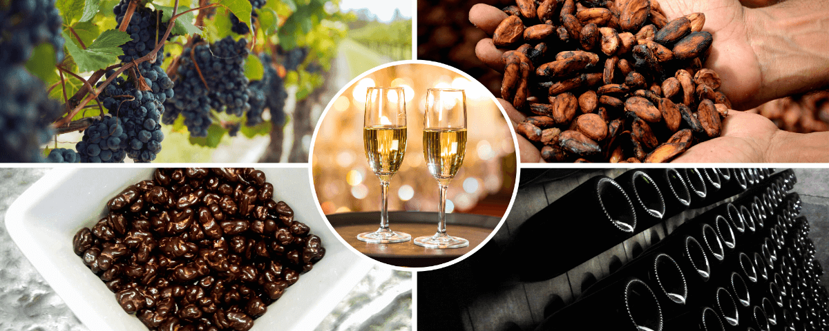 Chocolate and Wine Tour from Barcelona Spain