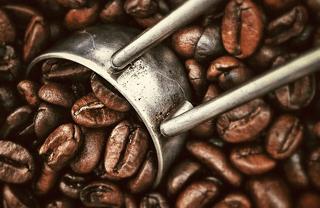 Best coffee in Barcelona: top city coffee roasters