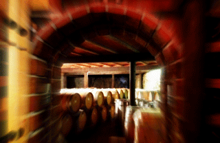 Barcelona Wine Country: at the cellars