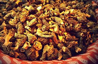 Dry mushrooms in Mercat de la Boqueria