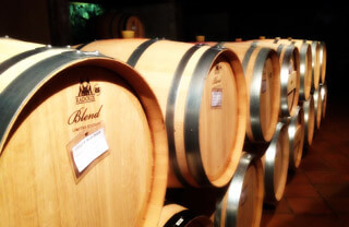 Barcelona Wine Tours: At the cellars