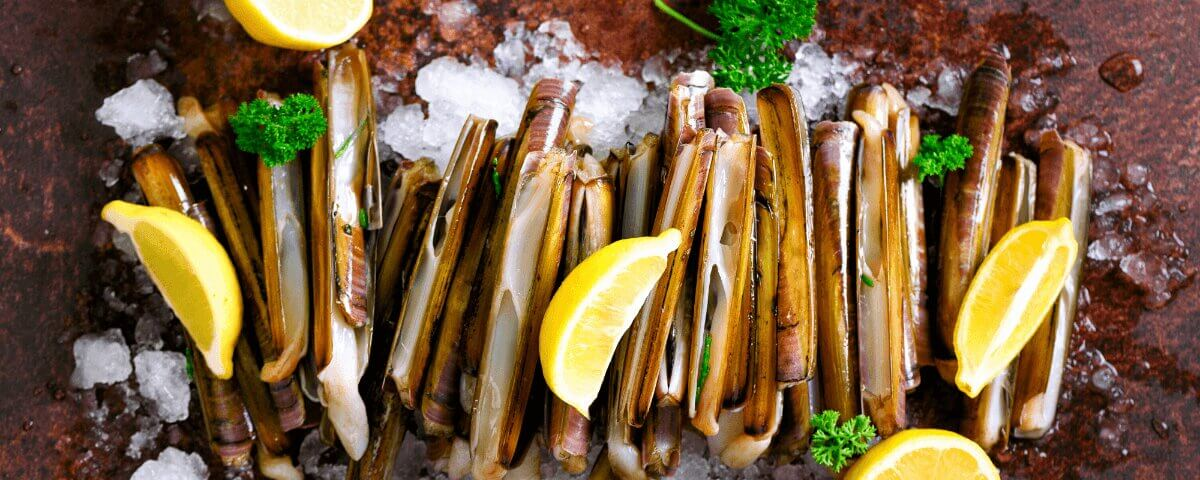 Spanish Types of Shellfish | ForeverBarcelona