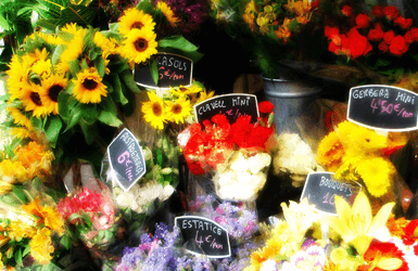 outdoor markets in Barcelona: flower market in La Rambla