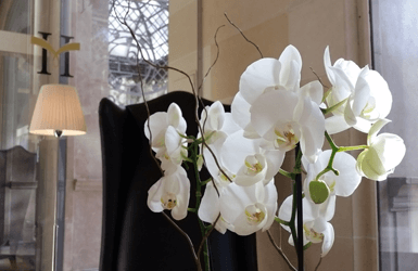 Majestic Hotel Review by ForeverBarcelona