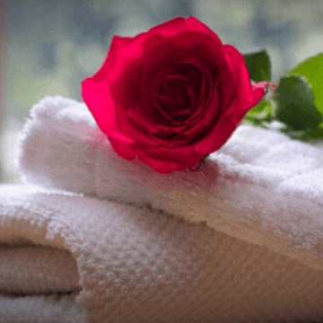 Rose and towels in the room of one of the green hotels in Barcelona