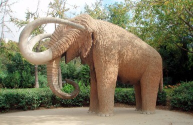 What to do in Ciutadella Park Mammoth