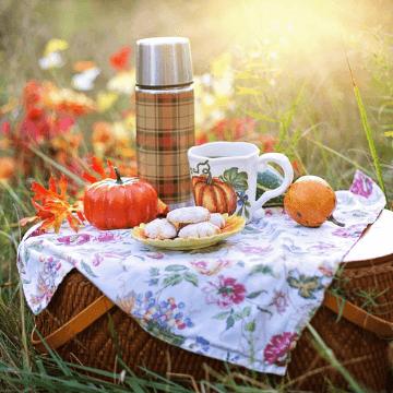 Barcelona picnic in the fall