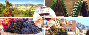 Montserrat and cava trail tour from Barcelona, Spain