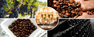 Images of our Chocolate Wine Tour from Barcelona (Spain)